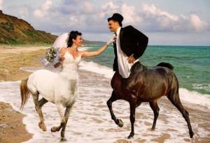 svadba-biznes1