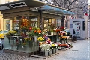 cveti-biznes-1